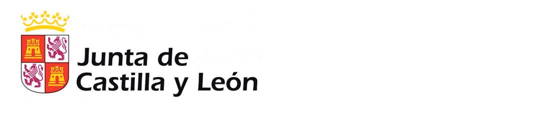 Registro como ONGD en la Comunidad Autónoma de Castilla y León